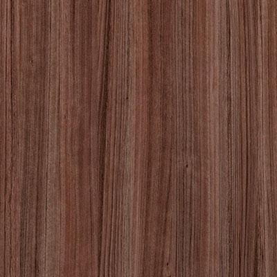 Eucalipto Covadonga