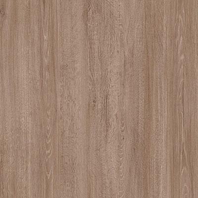 Oak Lucena