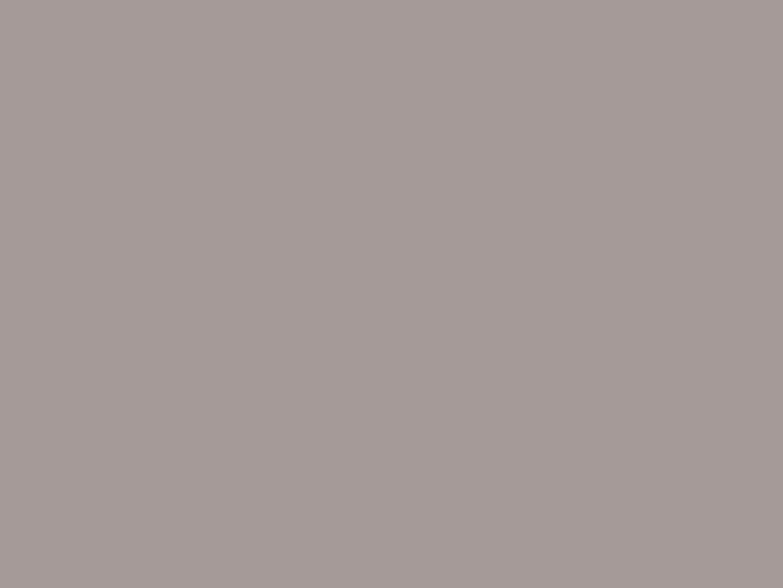 Grey Otoño