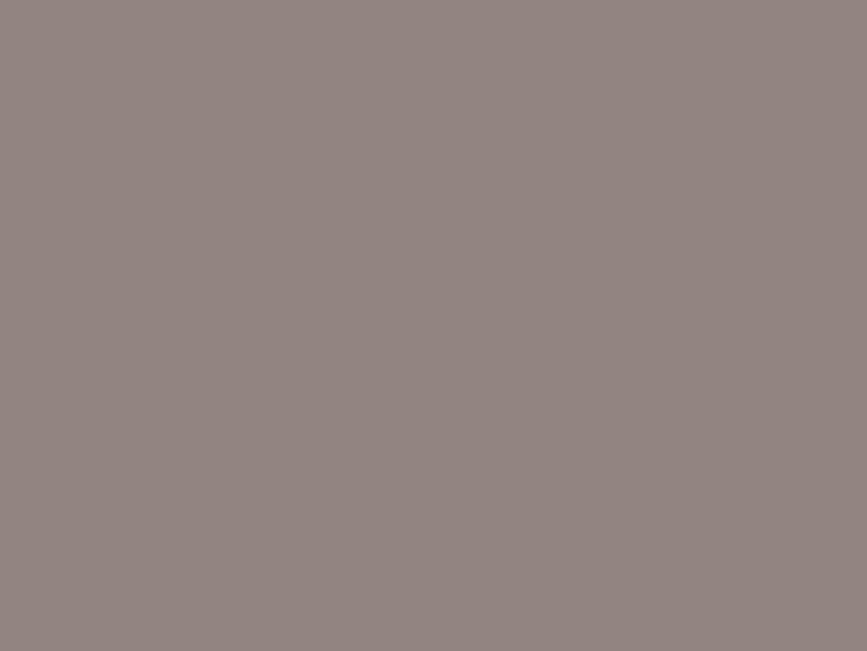 Grey Avellana