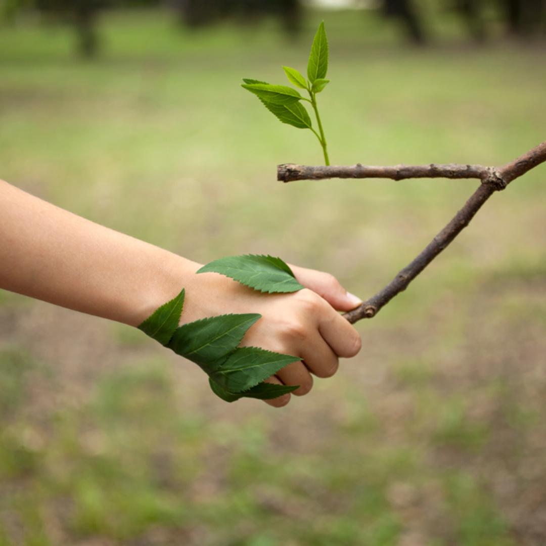 sudesa-sostenibilidad-y-certificaados